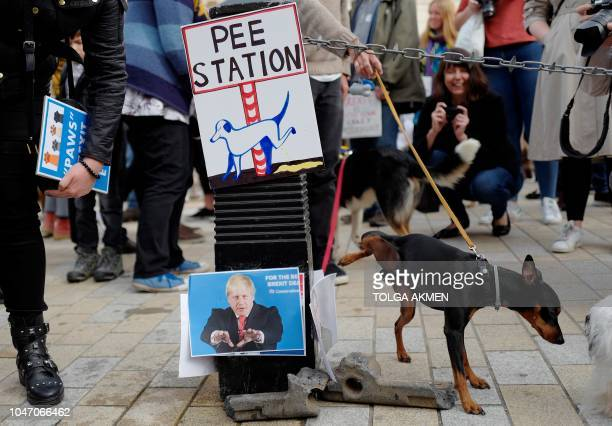 A dog urinates on images of proBrexit supporters Nigel Farage and Boris Johnson as dog owners and their pets gather before participating in a proEU...