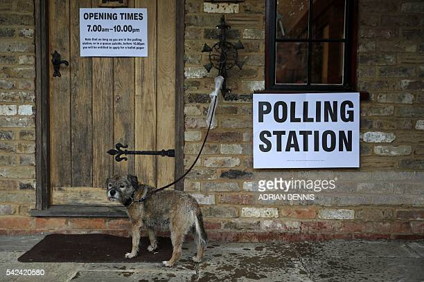 TOPSHOT A dog waits as its owner casts their ballot paper in a polling station set up in the grounds of a private residence near Fleet southwest of...