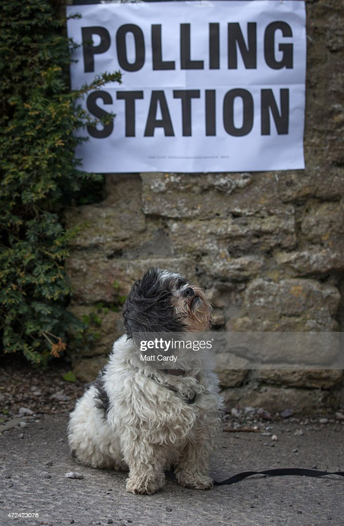 A dog waits for a voter to leave a polling station located in the Tithe Barn in the village of Mells on May 7, 2015 in Somerset, England. The United Kingdom has gone to the polls to vote for a new government in one of the most closely fought General Elections in recent history. With the result too close to call it is anticipated that there will be no overall clear majority winner and a coalition government will have to be formed once again.