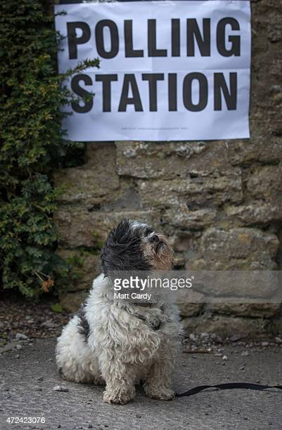 A dog waits for a voter to leave a polling station located in the Tithe Barn in the village of Mells on May 7 2015 in Somerset England The United...