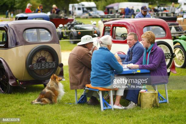 A dog waits for scraps from the picnic table at the 50th Austin Seven Rally at the National Motor Museum in Beaulieu Hampshire