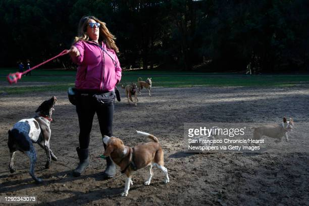 Dog walker Maria Myers flings a ball for her personal puppy Maisy at the Stern Grove off-leash dog park in San Francisco, Calif. On Thursday, Dec....