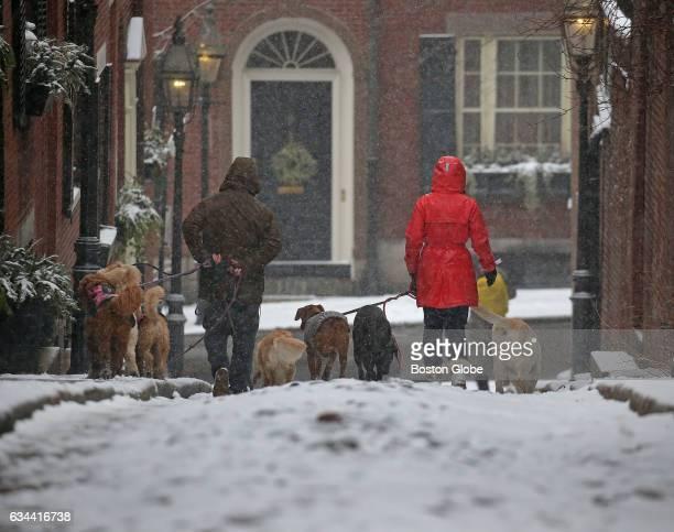 Dog walkers Dominic Mariano left and Tatum Knight walk through snow on Acorn Street on Beacon Hill in Boston on Feb 9 2017