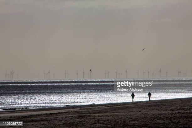 Dog walkers on Mablethorpe beach enjoy the winter sunshine with The Lincs Wind Farm in the distance It is a 270 MW offshore wind farm 8 kilometres...