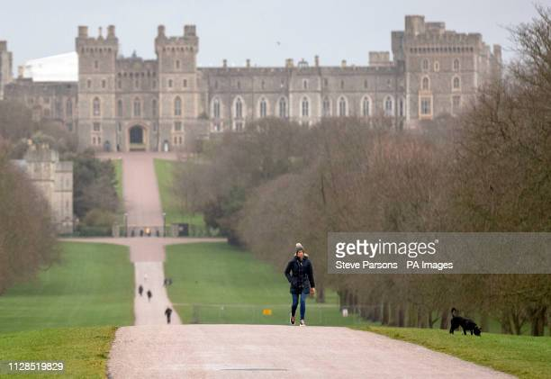 Dog walkers on the Long Walk at Windsor Castle in Berkshire