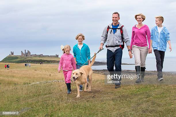 dog walkers - northumberland stock pictures, royalty-free photos & images