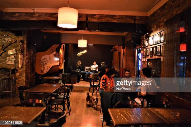 A dog walks around tables while people drink beer in a bar in Ankara Turkey on October 23 2018 According to the latest report by the World Health...