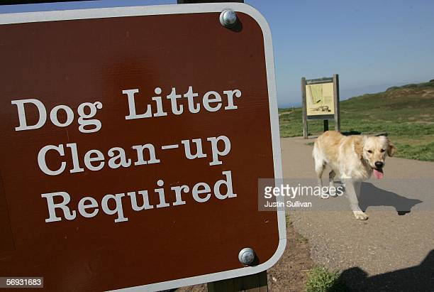 A dog walks by a sign about litter cleanup at Ft Funston February 24 2006 in San Francisco San Francisco is on its way to being the first city in the...