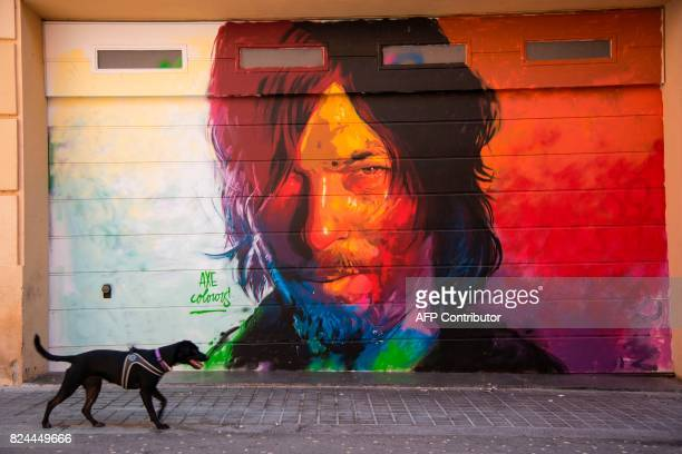 A dog walks in front a graffiti portraying US actor Norman Reedus known for playing Daryl Dixon in The Walking Dead TV series in Barcelona by street...