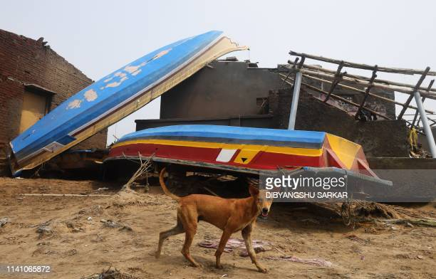 A dog walks past damaged fishing boats along the seafront in Puri in the eastern Indian state of Odisha on May 4 after Cyclone Fani swept through the...