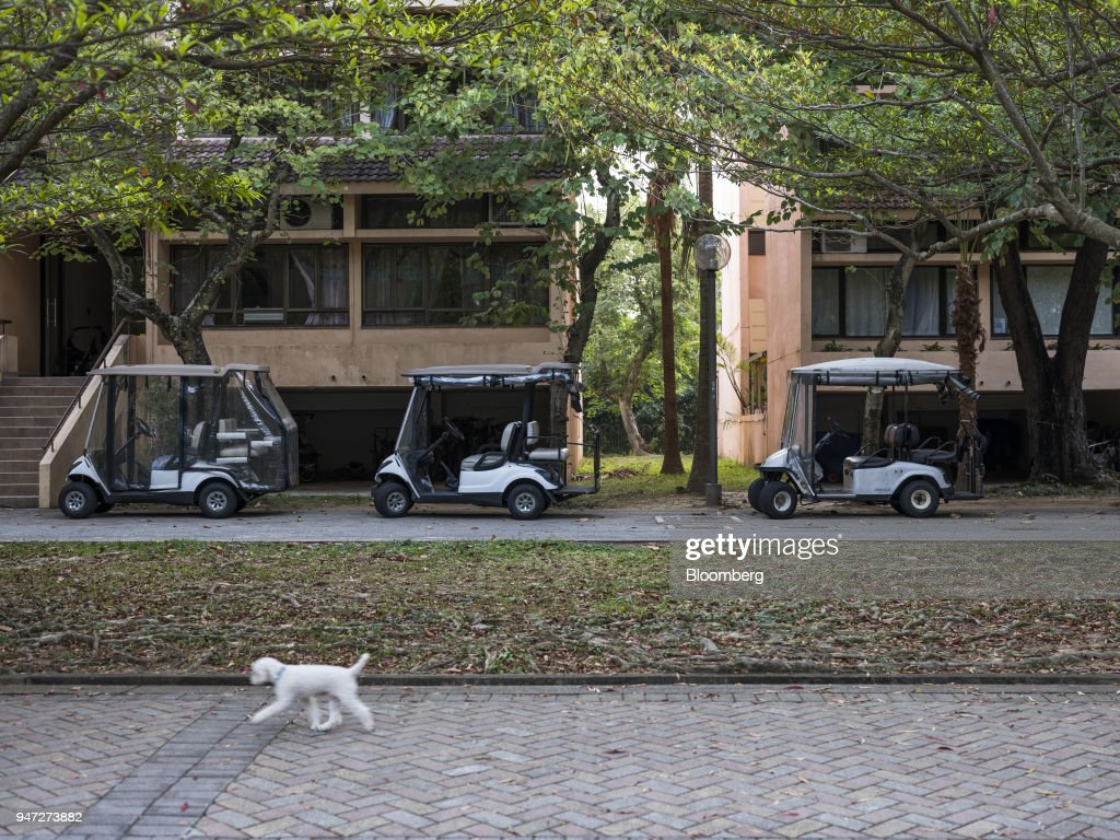 A dog walks past golf carts parked in front of low-rise buildings in Discovery Bay, a residential project developed by Hong Kong Resort Co., on Lantau Island in Hong Kong, China, on Tuesday, March 27, 2018. As carmakers race to sell glitzy new models to wealthy Chinese, the old-fashioned golf cart is the hottest buy in one corner of Hong Kong, with prices topping those of a Tesla Model S and Porsche's Boxster sports cars. Photographer: Justin Chin/Bloomberg via Getty Images