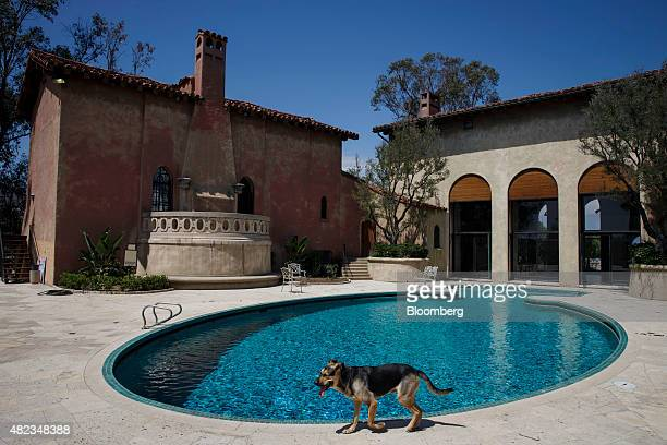 A dog walks past the swimming pool outside the former home of Sisters of the Most Holy and Immaculate Heart of the Blessed Virgin Mary on Waverly...