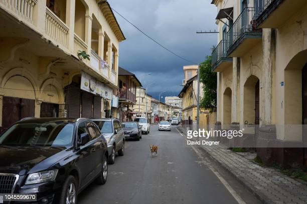 August 22: A dog walks the streets of downtown Malabo surrounded by colonial era architecture on August 22, 2018 in Malabo, Equatorial Guinea. .