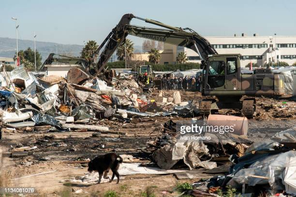 A dog walks through rubbish as police officers evict refugees from the shanty town of San Ferdinando on March 6 2019 in Reggio Calabria Italy The...