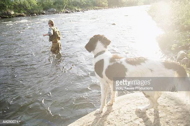 Dog Watching a Man Fly-fishing