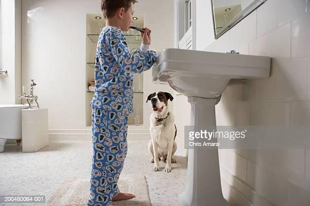 Dog watching boy (6-8) brushing teeth in bathroom