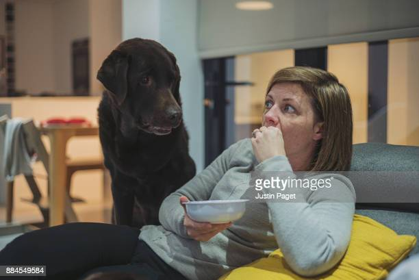 Dog watching woman eat