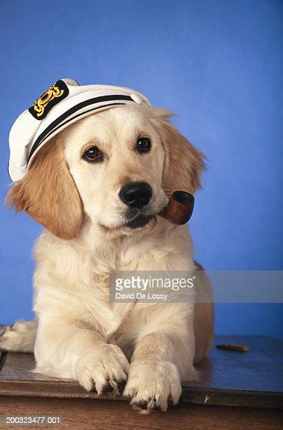 Dog wearing cap, holding smoke pipe