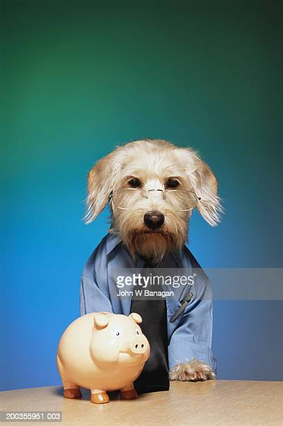 Dog wearing tie and glasses, next to piggy bank