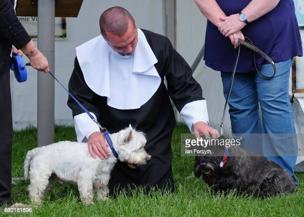 Dog wedding takes places during events at the Great North Dog Walk on June 4, 2017 in South Shields, England. Founded in 1990 by former teacher and...