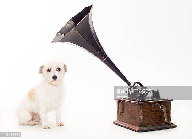 dog with gramaphone