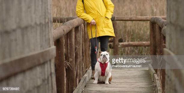 dog with her owner in the countryside