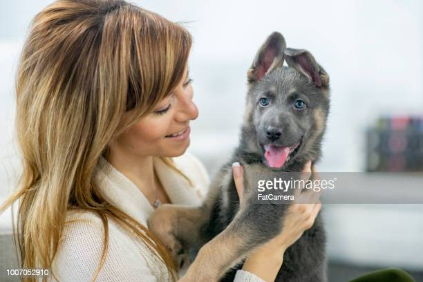 Dog With New Owner
