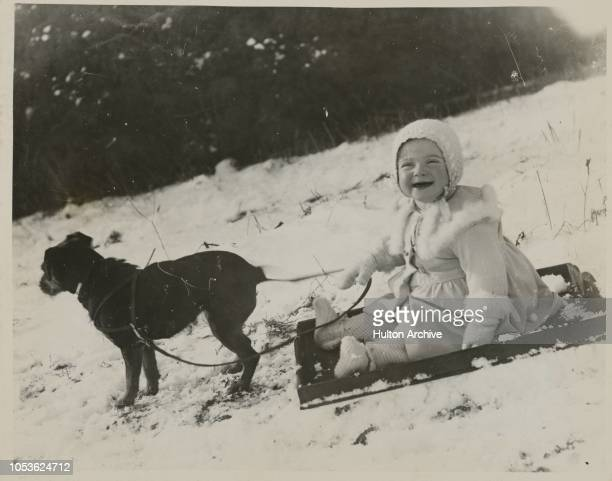 A Doggy Affair A young and enthusiastic resident of Hemel Hempstead Herts welcomes a fall of snow and persuades the dog to join in the fun in a...