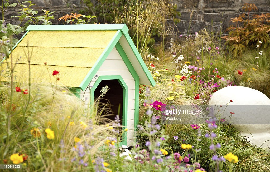 Doggy kennel : Stock Photo