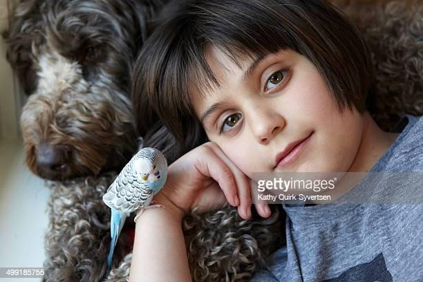 Dog,Parakeet, Budgerigar pet bird and girl,11 yrs.