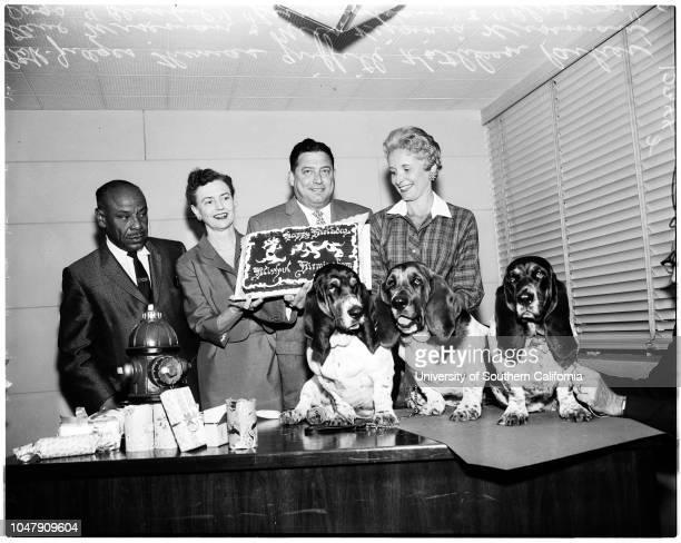 Dogs 9 May 1958 Judge Thomas GriffithKathleen ParkerMrs Virginia WisemanDog 'Blissful'Dog 'Birmingham' Dog 'Blossom'Caption slip reads 'Photographer...