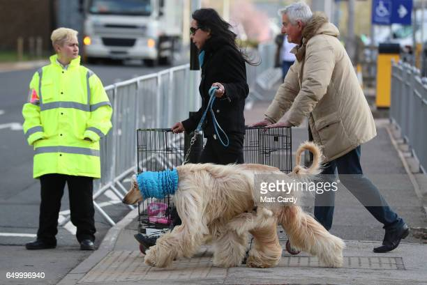 Dogs and owners arrive for the first day of Crufts Dog Show at NEC Arena on March 09, 2017 in Birmingham, England. First held in 1891, Crufts is said...