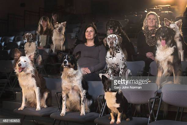 dogs and people at the theatre - medium group of animals stock pictures, royalty-free photos & images