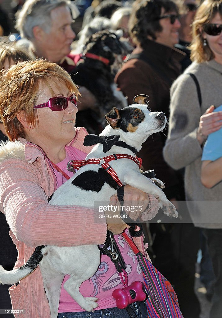 Dogs and their owners gather on the steps of the Sydney Opera House on June 5, 2010 to listen to a world first 'Music for Dogs' concert, the brainchild of New York performance artist Laurie Anderson. Almost 1,000 dog-lovers packed onto the Opera House steps and forecourt to treat their beloved pets to the free outdoor event, which is part of the Vivid LIVE arts festival curated by Anderson and rock legend partner Lou Reed. AFP PHOTO / Greg WOOD