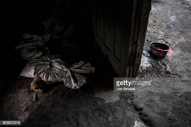Dogs are bound in sacks before their slaughter at a dog meat butchery house on July 27 2017 in Yogyakarta Indonesia Indonesians have seen a...