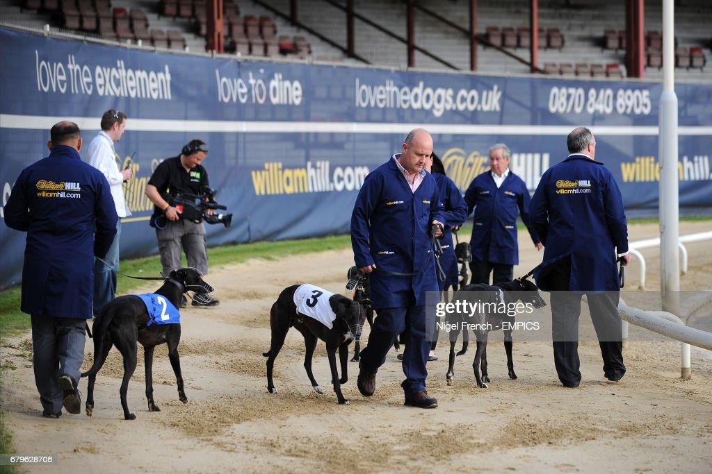 william hill greyhound derby 2021 betting