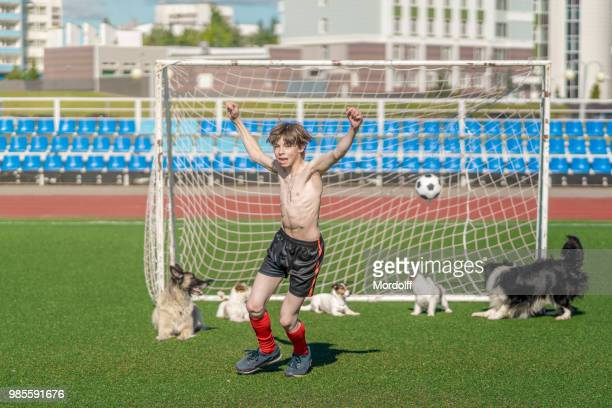 dogs conceding ball in football goal - forward athlete stock pictures, royalty-free photos & images