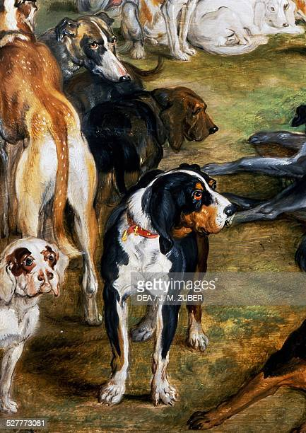 Dogs detail from Diana and her Nymphs on the point of leaving 16231624 painting by Jan Brueghel the Elder and Peter Paul Rubens Netherlands 17th...