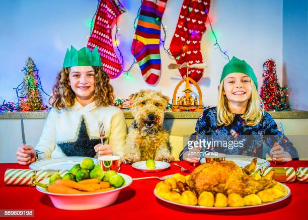 犬の夕食、ペットの犬とクリスマスのテーブルで若い 2 人の姉妹