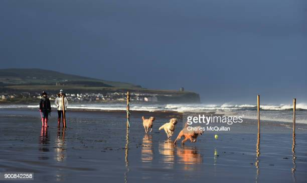 Dogs enjoy a break in the weather on Portstewart strand after Storm Eleanor recorded winds of up to 90mph on January 3 2018 in Portrush Northern...