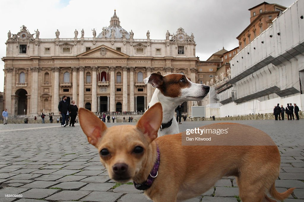 Dogs run around St Peter's Square on March 11, 2013 in Vatican City, Vatican. Cardinals are set to enter the conclave to elect a successor to Pope Benedict XVI after he became the first pope in 600 years to resign from the role. The conclave is scheduled to start on March 12 inside the Sistine Chapel and will be attended by 115 cardinals as they vote to select the 266th Pope of the Catholic Church.