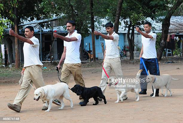 Dogs selected from MP being trained by their handlers at Police Dog Training Centre at Bhadbhada on March 9, 2015 in Bhopal, India.