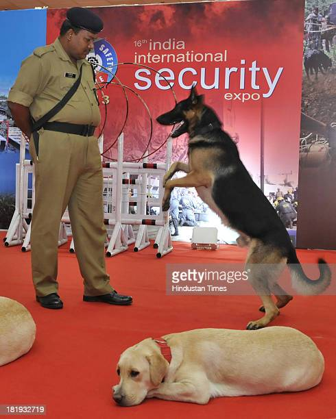 CISF dogs show at the India International Security Expo on September 26 2013 in New Delhi India This expo will showcase products of surveillance...