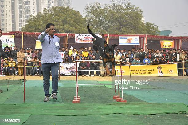 Dogshow was organised where dozens of residents participated with their pets who displayed acrobatics and other items to the visitors at NH24 on...