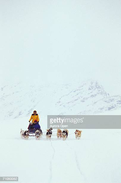 Dogsled team travels through snowstorm across Meta Incognita Peninsula, Baffin Island, Nunavut, Canada.