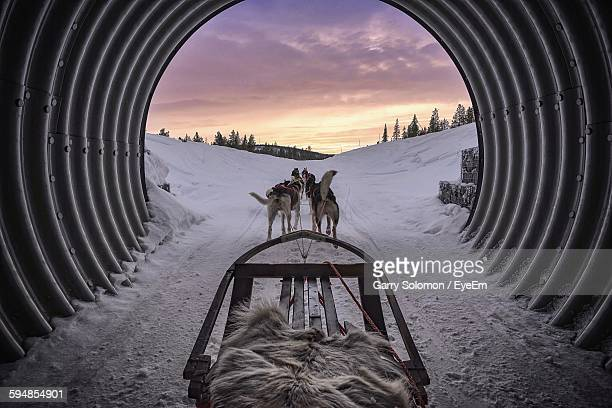 Dogsledding In Tunnel During Winter