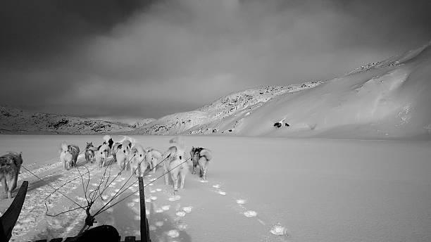 Dogsleding from Tasiilaq to Tinit