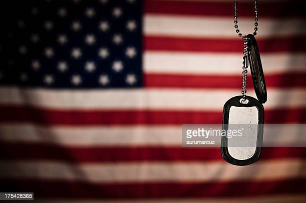dogtags - saluting stock pictures, royalty-free photos & images