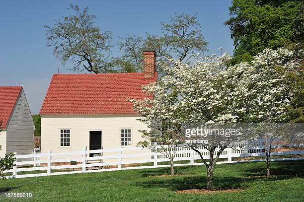 Dogwood and Farmhouse
