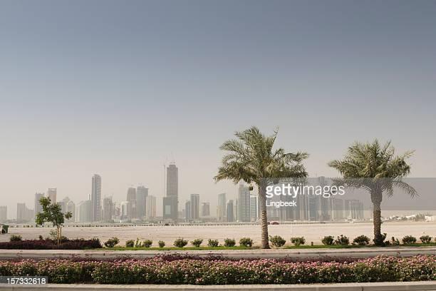 Doha skyline and palm trees